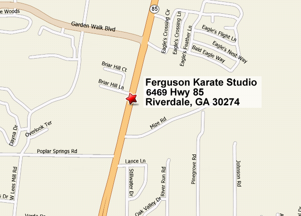 Ferguson Karate Studio Riverdale